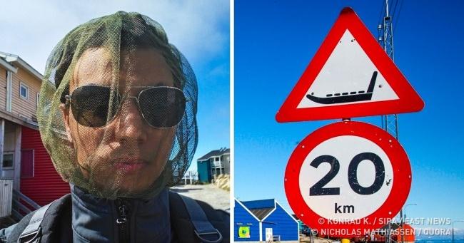 Як живуть люди в краю вічних льодів — Гренландії (Спойлер: їм не потрібні дороги)